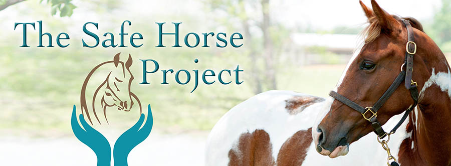 The Safe Horse Project